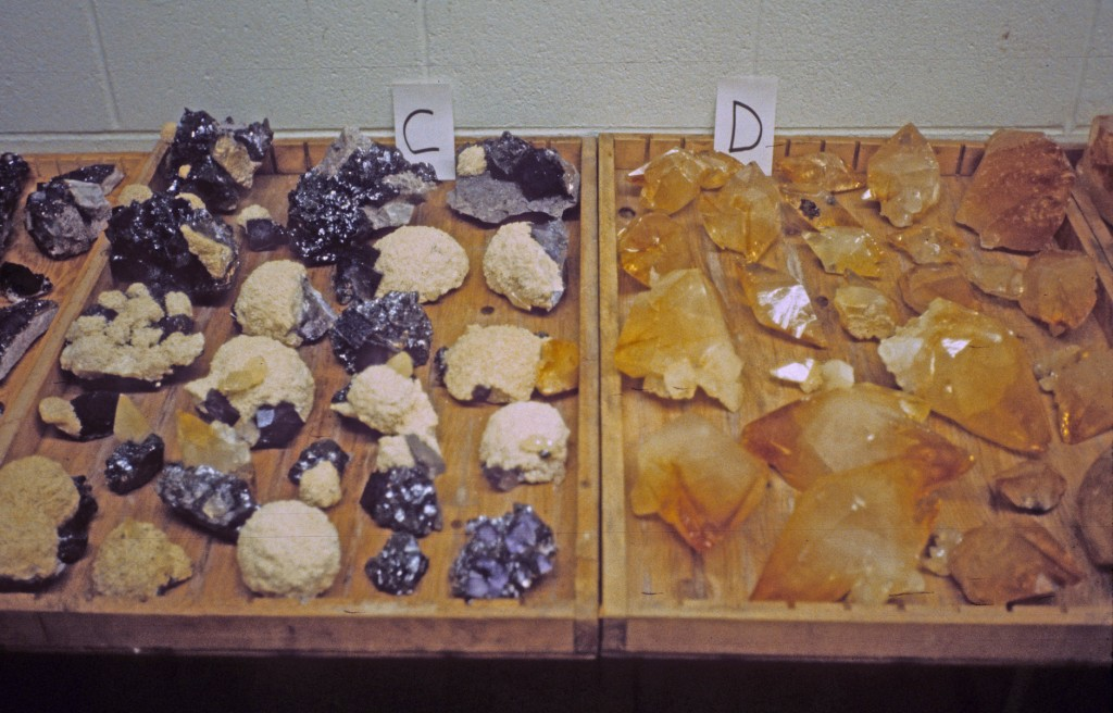 Trays full of Elmwood Mine Calcite and Fluorite for auction at the Elmwood Mine Vault. Photo: Rock H. Currier