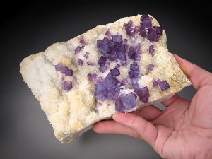 Fluorite on Quartz Blanchard Mine Bingham Socorro County New Mexico Mineral Specimen For Sale