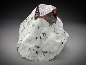 Mineral Specimen Brown Zircon Crystal on Matrix Dara-i-Pech Konar Province Afghanistan For Sale